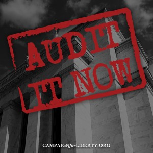 Audit It Now!